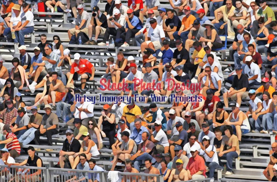 Spectators at a Public Event 3