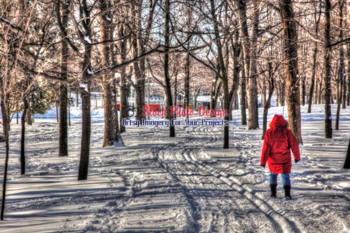 Winter Walk in HDR