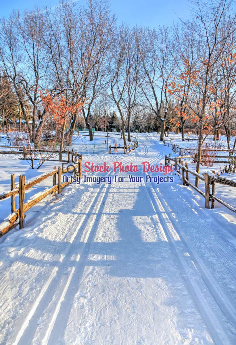 Winter Scene in HDR