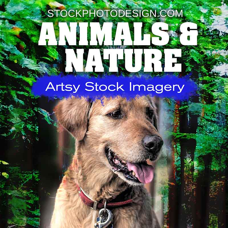 Animals and Nature Artsy Royalty-Free Pictures