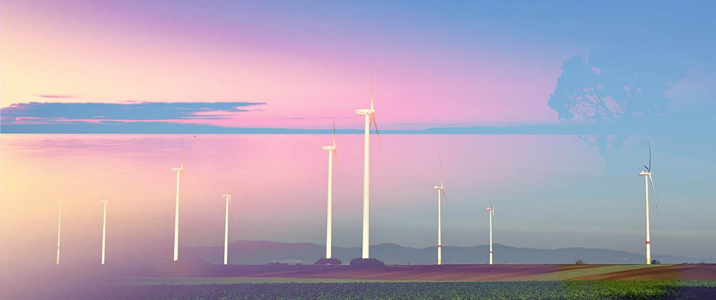 Windmills at Sunset 02